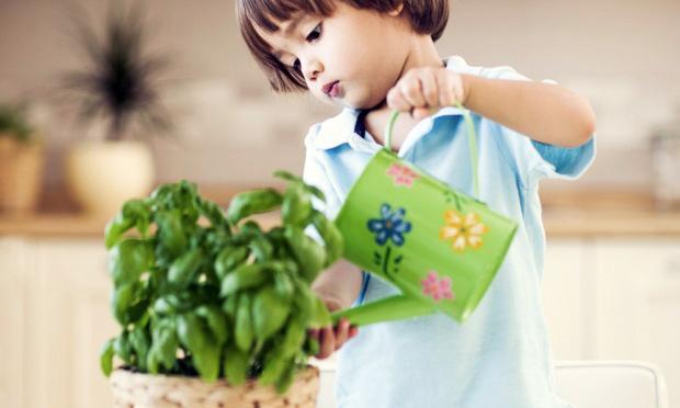 criança regando planta