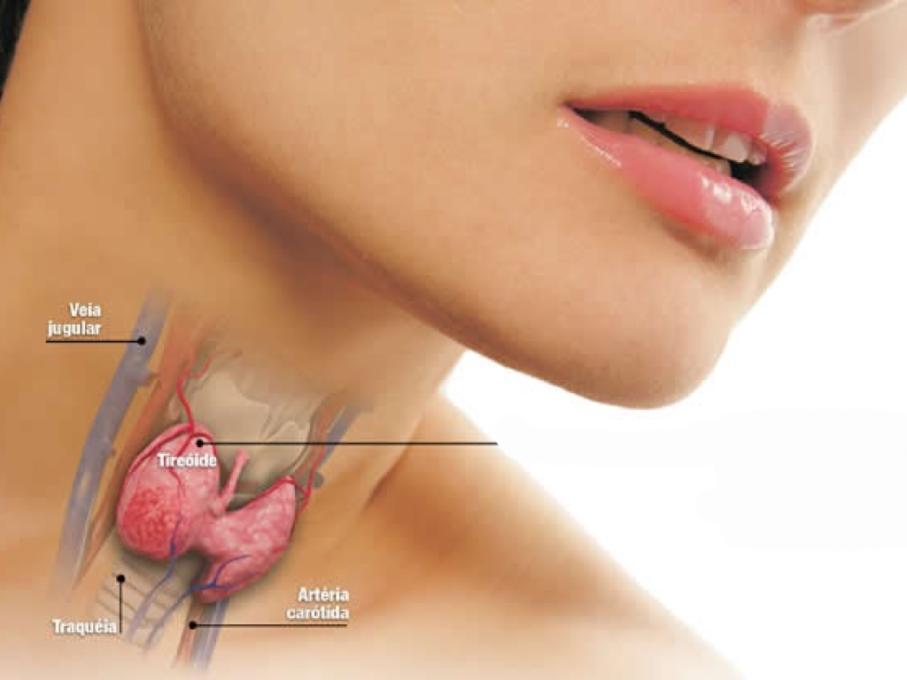 hormonios-tireoidianos-oral