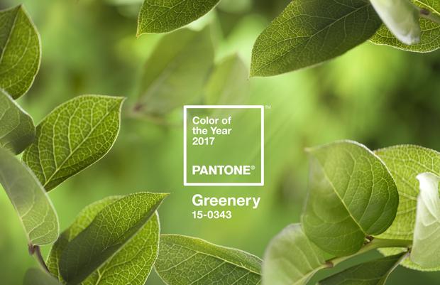 pantone_coy_2017_heroshot2-rgb