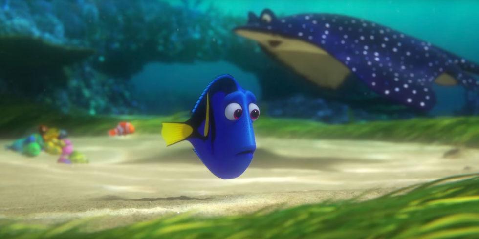 Quem aí, assim como a peixinha Dory, também vive esquecendo as coisas?