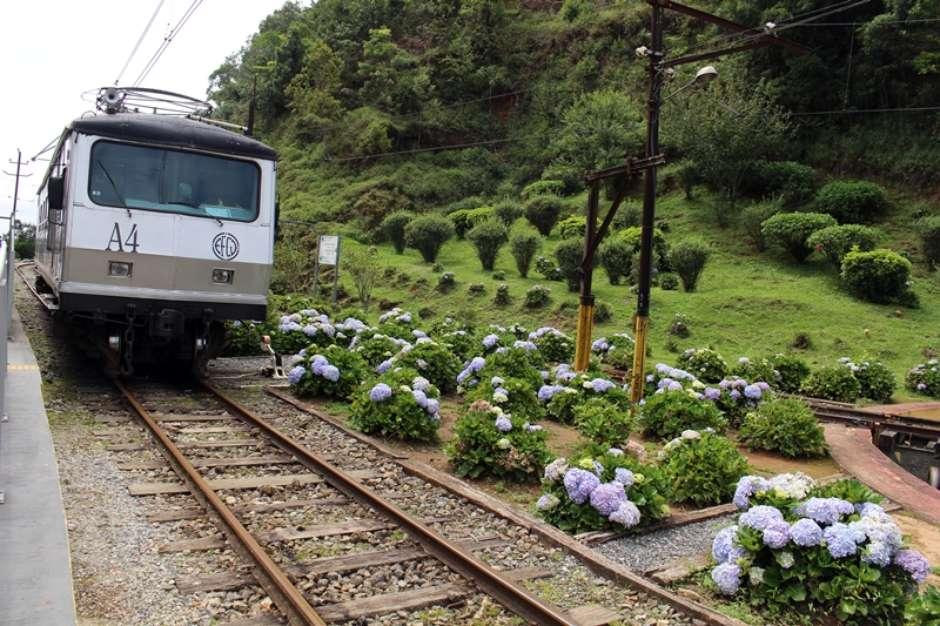 (Foto: Reprodução/Trem do Mirante / Guia da Semana)