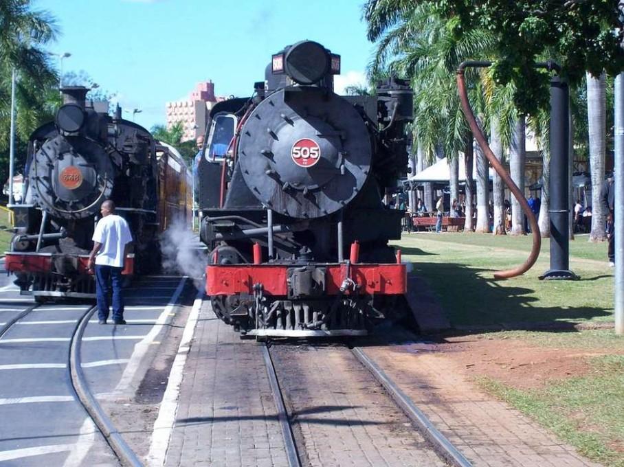 Foto: Reprodução/Commons Wikimédia Fabricio de Souza Menegildo / Guia da Semana