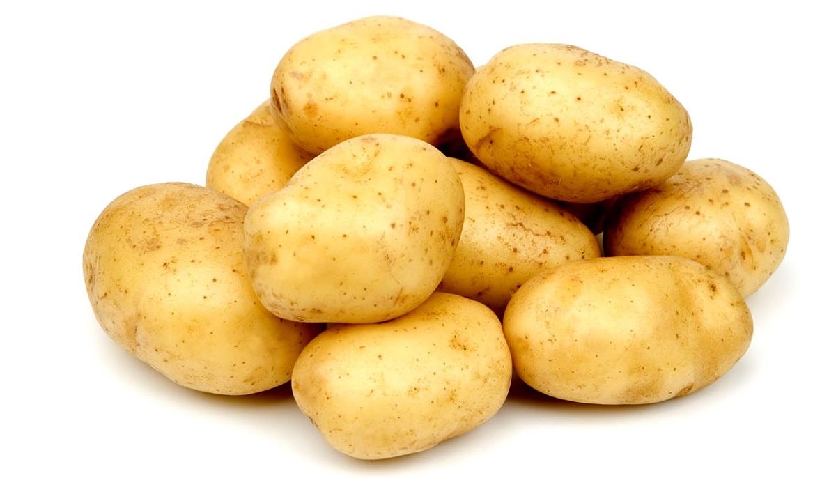 batata-florao-branca